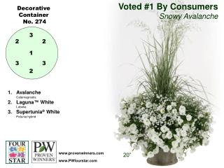 Voted #1 By Consumers Snowy Avalanche