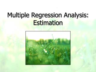 Multiple Regression Analysis: Estimation