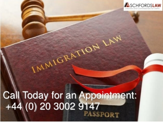 Sole Representative Visa UK | Probate Solicitor