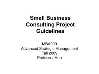 Small Business Consulting Project Guidelines