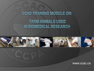 CCAC Training Module on: Farm Animals USED in Biomedical Research