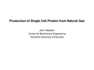 Production of Single Cell Protein from Natural Gas