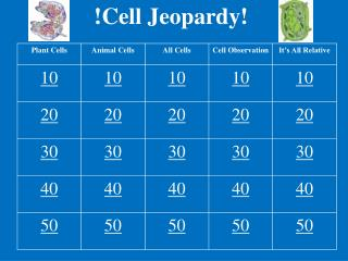 !Cell Jeopardy!
