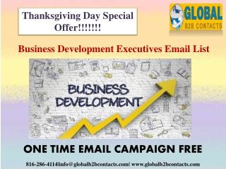 Business Development Executives Email data