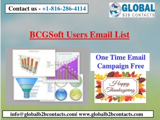 BCGSoft Users Email List