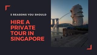 5 Reasons You Should Hire A Private Tour in Singapore