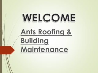 Roofing Maintenance Whitley