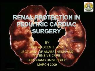 RENAL PROTECTION IN PEDIATRIC CARDIAC SURGERY