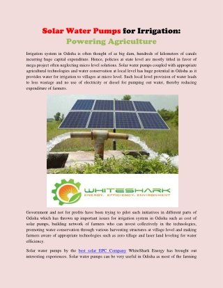 Solar Water Pumps for Irrigation Powering Agriculture