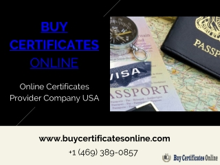 Visa And Immigration Services At Affordable Price