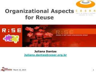 Organizational Aspects for Reuse