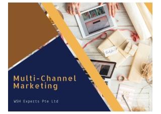 Multi-Channel Marketing Service Providers