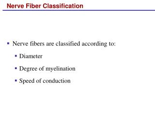 Nerve Fiber Classification