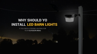 Secure Your Yard By Using LED Yard Lights