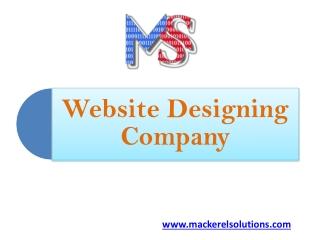 Website Designing Company - Mackerel Solutions