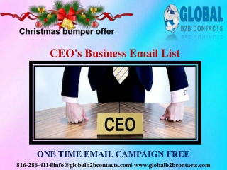 CEO's Business Email List