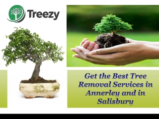 Get the Best Tree Removal Services in Annerley and in Salisbury