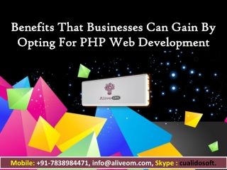 Benefits That Businesses Can Gain By Opting For PHP Web Development