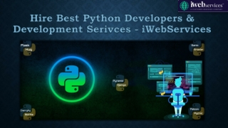 Hire Best Python Developers & Development Serivces - iWebServices