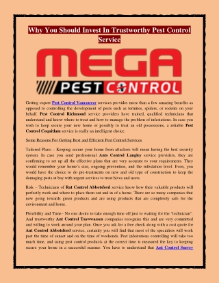 Why You Should Invest In Trustworthy Pest Control Service