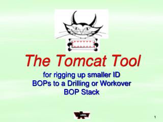 The Tomcat Tool
