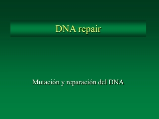 DNA DNA Mutation and Repair