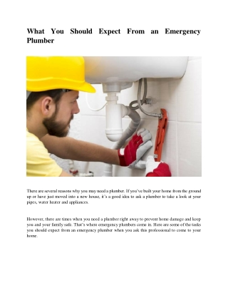 What You Should Expect From an Emergency Plumber