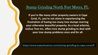 Stump Grinding North Fort Myers, FL