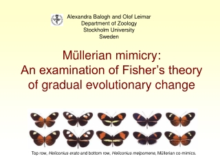 Müllerian mimicry:  An examination of Fisher's theory of gradual evolutionary change