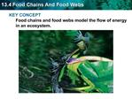 KEY CONCEPT  Food chains and food webs model the flow of energy in an ecosystem.