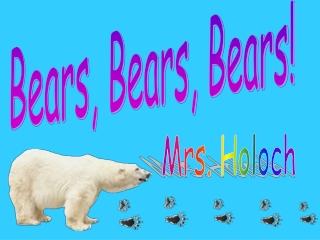 Bears, Bears, Bears!