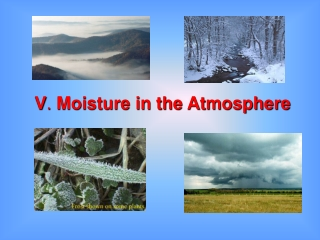 V .  Moisture in the Atmosphere