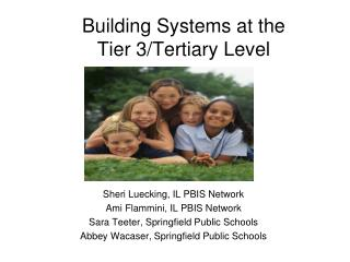 Building Systems at the  Tier 3/Tertiary Level