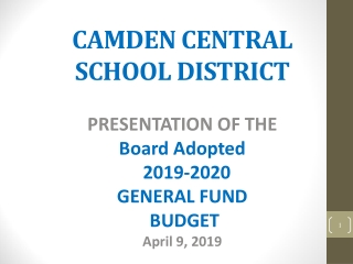 CAMDEN CENTRAL  SCHOOL DISTRICT