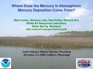 Where Does the Mercury in Atmospheric Mercury Deposition Come From?