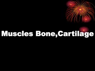 Muscles Bone,Cartilage