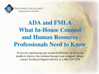 INTRODUCTION Mary Ellen Simonson Lewis and Roca, LLP