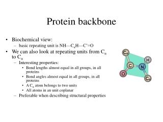 Protein backbone