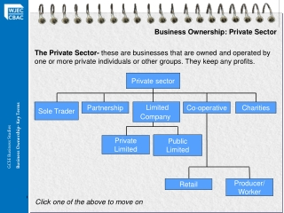 Business Ownership: Private Sector