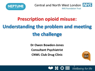 Prescription opioid misuse: Understanding the problem and meeting the challenge