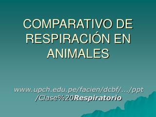 COMPARATIVO DE  RESPIRACIÓN EN ANIMALES