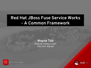 Red Hat  JBoss  Fuse Service Works - A Common Framework