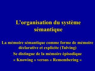 L'organisation du système sémantique