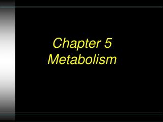 Chapter 5 Metabolism