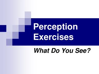 Perception Exercises