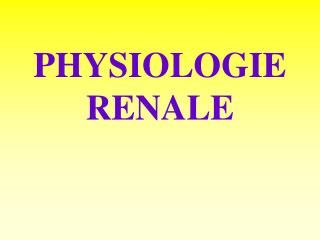 PHYSIOLOGIE RENALE