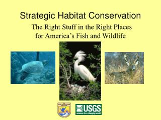 Strategic Habitat Conservation The Right Stuff in the Right Places  for America's Fish and Wildlife