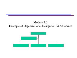 Module 3.0 Example of Organizational Design for F&A Cabinet