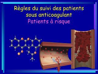 Règles du suivi des patients  sous  anticoagulant Patients à risque