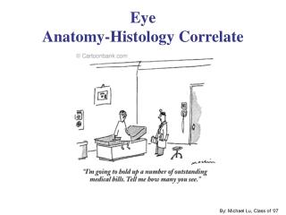 Eye Anatomy-Histology Correlate